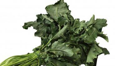 Il broccolo fiolaro